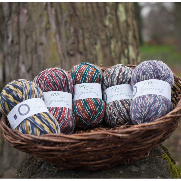 WYS Country Birds 4 Ply sock yarn