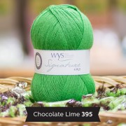 West Yorkshire Spinners sock yarn Chocolate Lime