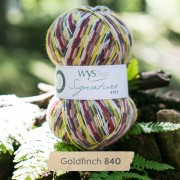 West Yorkshire Spinners sock yarn Goldfinch