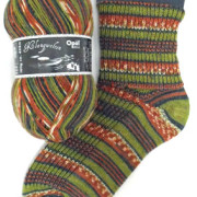 Opal Sock Yarn Klangwelten Turntable_9045