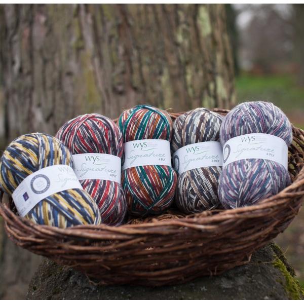 WYS Country Birds 4 Ply sock yarn