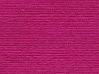 Fuchsia 06617