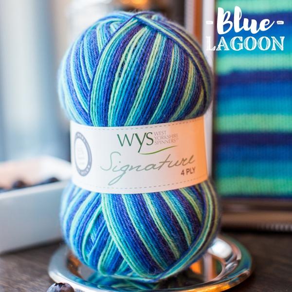 WYS Blue_Lagoon sock yarn