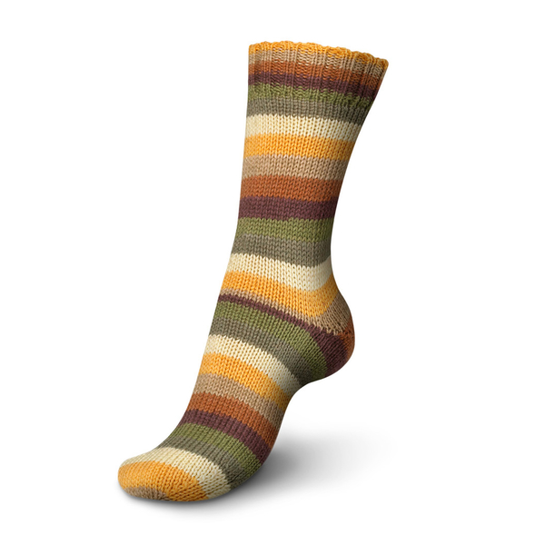 Regia Stripemania 6 Ply Sock Yarn 6366-nature