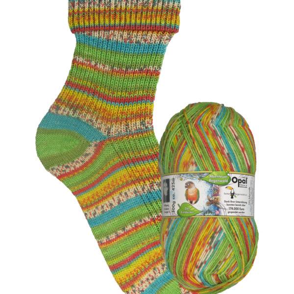 Opal Rainforest sock yarn macaw_9456